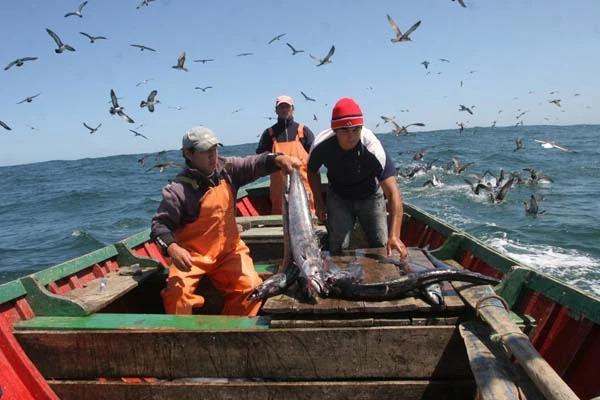 Diputado Santana valoró la entrega de un bono de Aporte Solidario para pescadores artesanales
