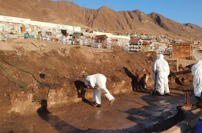 Cementerio de Antofagasta construirá 90 nichos debido a la pandemia por el Covid-19