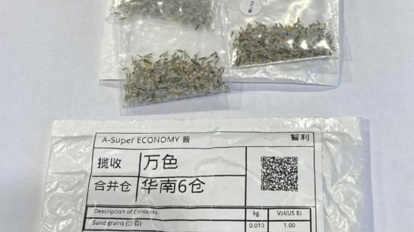 SAG alerta que paquetes recibidos del extranjero que contengan semillas desconocidas deben ser reportadas