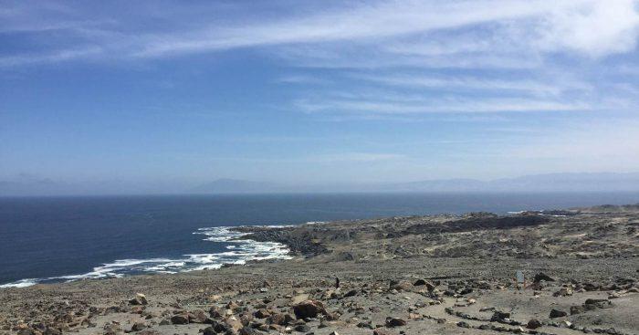 CORE de Antofagasta aprobó recursos para desarrollar estudio sobre biodiversidad marina