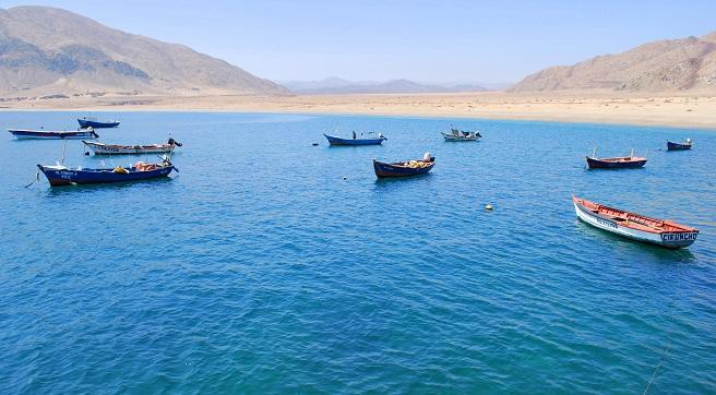 """CORE ratifica proyectos ganadores del """"Programa de transferencia para el sector pesquero artesanal región de Antofagasta 2018-2020"""