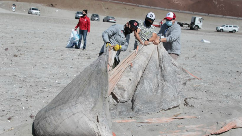 Realizan limpieza en playa La Rinconada de Antofagasta