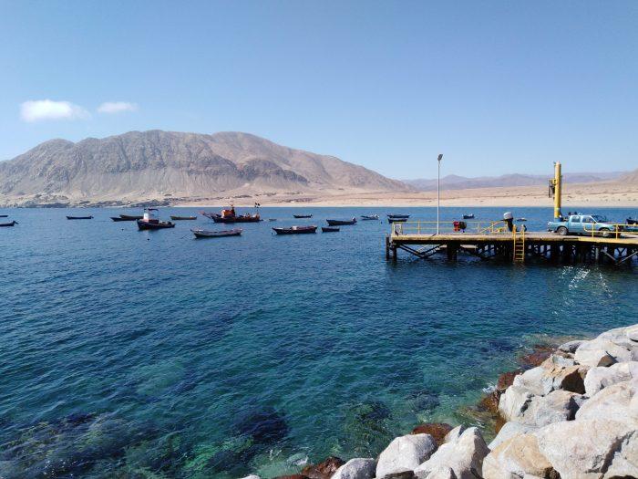 Gobierno financiará 310 millones de pesos para proyectos del sector pesquero de Antofagasta