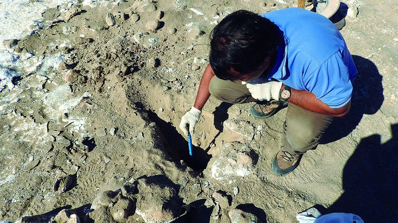 Hallazgo de arcillas en Atacama es pista clave para la investigación de vida en Marte