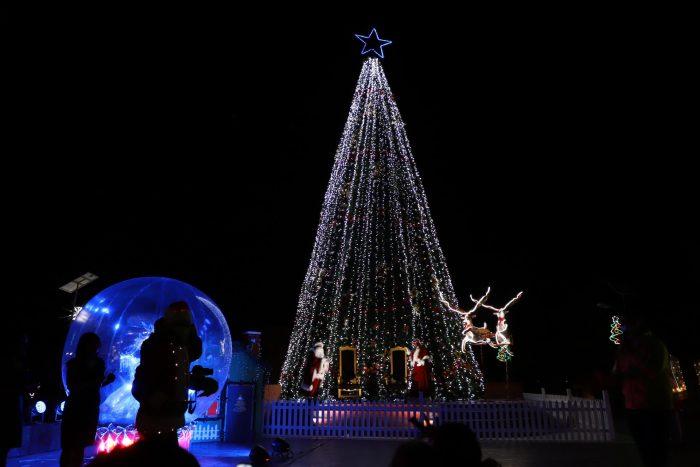 """Con el encendido del árbol navideño se dio inicio al programa """"Ilumina Calama 2020"""""""
