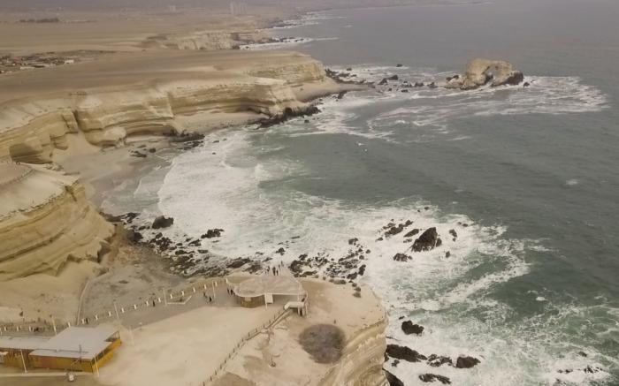 Aves y fauna recuperaron su sector a una década del cierre de la playa en La Portada
