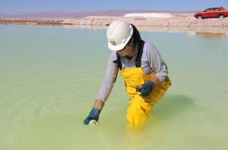 SQM entre las cinco empresas chilenas más sustentables según ponderación ESG