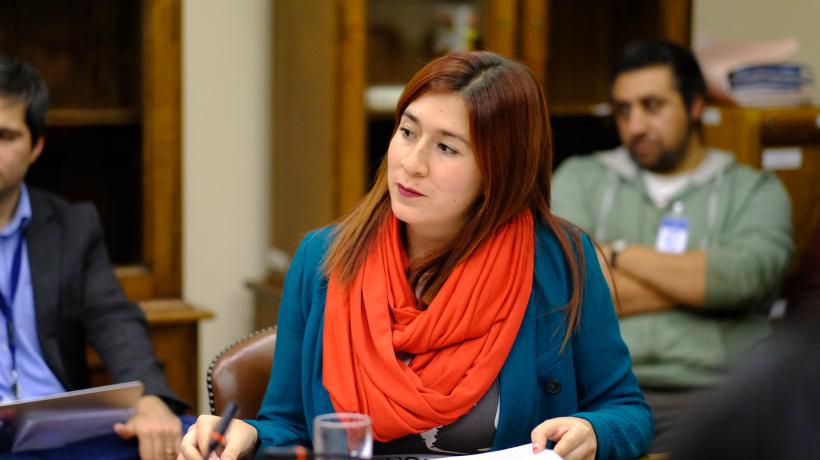 Diputada Catalina Pérez y parlamentarios de oposición solicitan comisión investigadora por licitación del Instituto de Tecnologías Limpias
