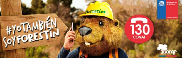 Yo también soy Forestín: campaña de prevención de incendios forestales 2020