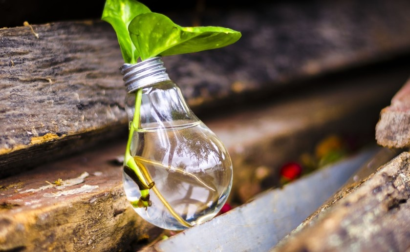 Realizarán ronda de negocios para impulsar proyectos de economía circular