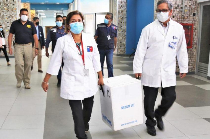 Universidad de Antofagasta implementó ultra-congelador para almacenar vacunas