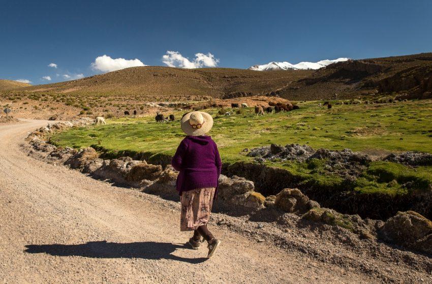 Habilitan traslado desde localidades rurales a centros de votación de la Región de Antofagasta