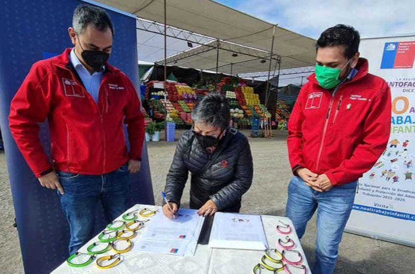 Antofagasta: Firman compromiso para la erradicación del trabajo infantil en el sector agrícola