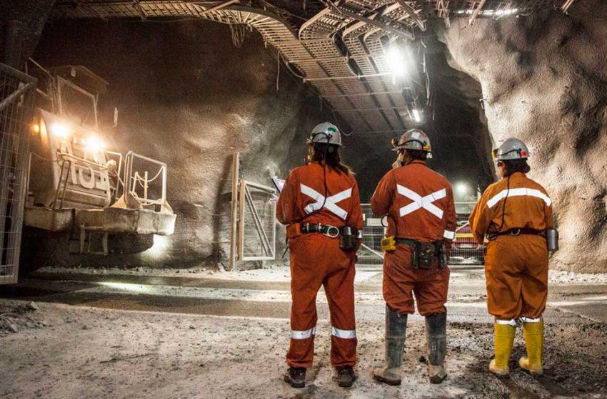 Rueda Virtual de Negocios del Mes de la Minería finaliza con más de 500 reuniones entre proveedores y 11 grandes compañías